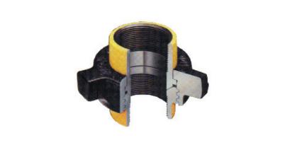 Fig 100 hammer union